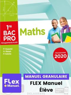 Mathématiques - Groupement A et B - 1re Bac Pro (Ed. num. 2021) - FLEX manuel numérique granulaire élève
