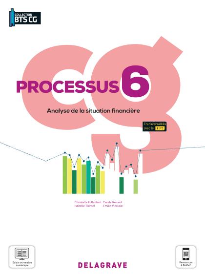 Processus 6 - Analyse de la situation financière BTS Comptabilité Gestion (CG) (2021) - Pochette élève