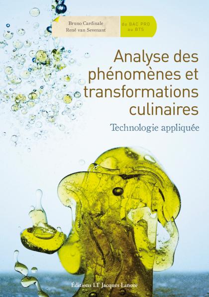 Analyse des phénomènes et transformations culinaires (2010)