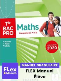 Maths - Groupements A et B - Tle Bac Pro (Ed. num. 2021) - FLEX manuel numérique granulaire élève